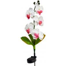 """Светильник садово-парковый на солнечной батарее """"Орхидея белая с розовым"""", 5 LED белый, 70см , PL301"""