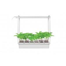 ULT-P34-10W/SPLE IP40 WHITE 12 Набор «Минисад», светильник для растений светодиодный с подставкой. Спектр для фотосинтеза. 12 кашпо в/к, белые. TM Uniel